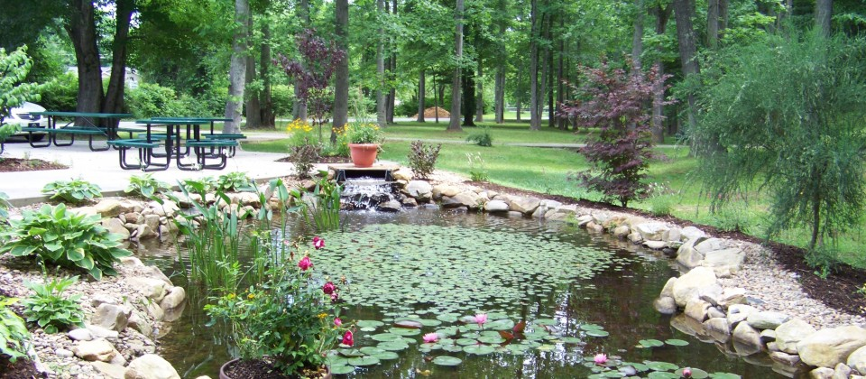 Pond & Patio Adjacent to Pavilion Surrounded by Westin Woods Elder Garden